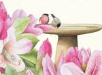 Birdbath Flowers